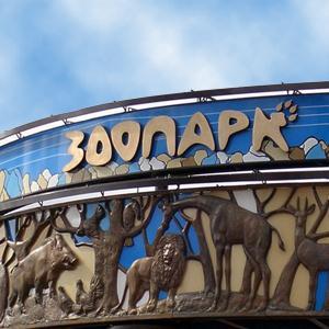 Зоопарки Пряжи